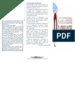 Guia de Utilizador Bibliotecas.docx