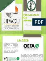 FISCALIZACIÓN-AMBIENTAL_EXPOSICION_NUEVO.pptx