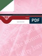 curso de segurança do trabalho em ingles.pdf