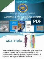 1 Sistema Digestivo para estudiantes.pptx