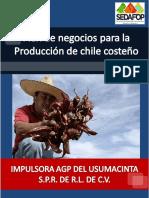 IMPULSORA AGP DEL USUMACINTA S.P.R. DE R.L. DE C.V..pdf