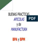 BUENAS_PRACT_APICOLAS_MANUFACT.pdf