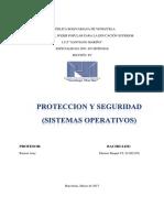 PROTECCION Y SEGURIDAD (Ensayo Tecnologico)