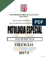 g.p.patología Especial 2017-i