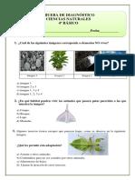 4º Básico-ciencias naturales-2015.pdf