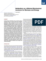 Noor_2010_Central Carbon Metabolism as a Minimal Biochemical Walk Between Precursors for Biomass and Energy