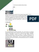 10 Fuentes de Energia Renovable