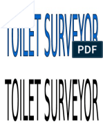 Toilet Surveyor