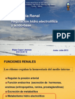 FSL Renal Hidroelectrolica Acido Base E Copari J