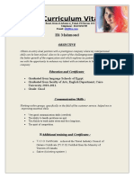 Professional Resume Format (14)