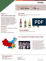 ABI_FS16_China.pdf