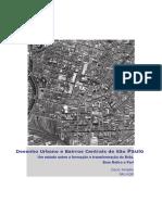 Desenho Urbano e Bairros Centrais de São Paulo
