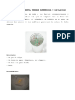 Proyecto Experimental Tension Superficial y Capilaridad