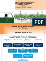 Presentación Proyecto Cría de Cerdos en Cama Profunda (Bartolo-yenny)