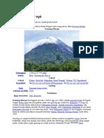 Gunung Merapi.docx