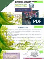 Base de Datos-sistemas de Informacion