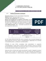 Poiect Strategie.doc