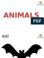2.3 - ANIMALS
