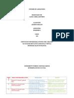 Informe de Laboratorio Bioquimica