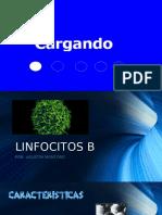 LINFOCITOS B expo inmuno.pptx