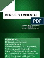 DERECHO AMBIENTAL (1).ppt