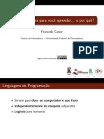 5linguagens.pdf