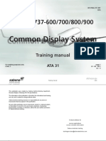 31 Common Display System