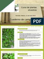 cuadernodecampodelcurso-160630151713