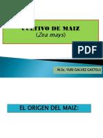 2. Cultivo de Maiz