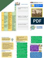 folleto-SOCIOEMOCIONAL.pdf