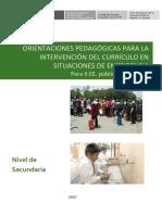 UD-CURRICULO-EMERGENCIA-SECUNDARIA.pdf