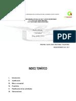 Plan Anual Tutoria 2016-2017