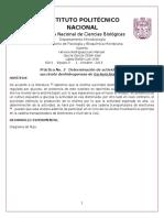 182037641-Practica-3-Succinato-deshidrogenasa.docx