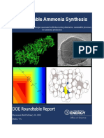 Sustainable Ammonia Report