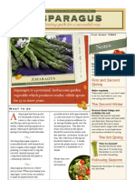 Asparagus - Printable fact sheet and guide + recipe