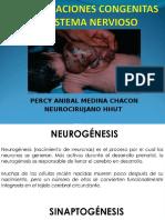 Clase Malformaciones Del Sistema Nervioso Central