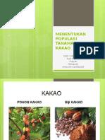 Menentukan Populasi Tanaman Kakao Kel 3