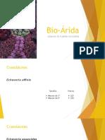 Bio-Árida Catálogo Pre