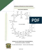 MANUAL DE PRACTICAS 2016 VERSION DEFINITIVA.docx.pdf