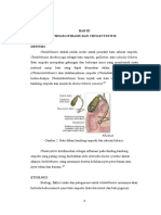 choledokolithiais 4