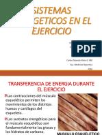 1.-SISTEMAS-ENERGETICOS-EN-EL-EJERCICIO-JCGT-CENG.pdf