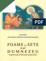 Patriarhul Daniel - Foame şi sete după Dumnezeu