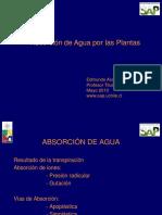Absorcion_de_agua_por_las_plantas.pdf
