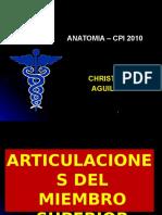Cfc - Articulaciones Ms