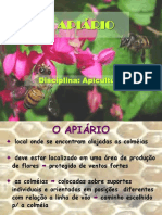 Apia Rio