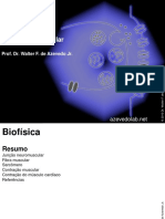 biofisica7.pdf