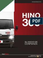 camión liviano Serie 300