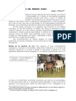 enf de pequños rumiantes cabras.pdf