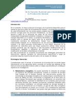0 Balbuena, 2003. Manipulacion Funcion Ruminal