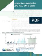 Perpectivas Agricolas OCDE FAO 2016-2025